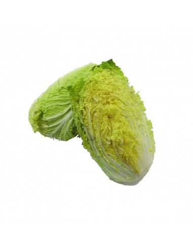 LONG CABBAGE (KUBIS PANJANG)