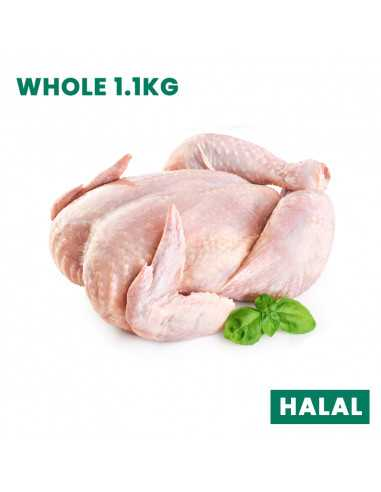 FRESH CHICKEN WHOLE 1.1KG