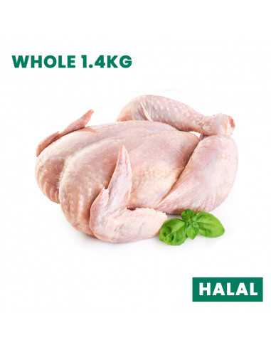 FRESH CHICKEN WHOLE 1.4KG