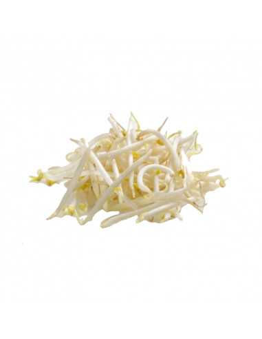 BEAN SPROUT (TAUGE)